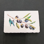Amalfi paper greeting card with olive branch decoration
